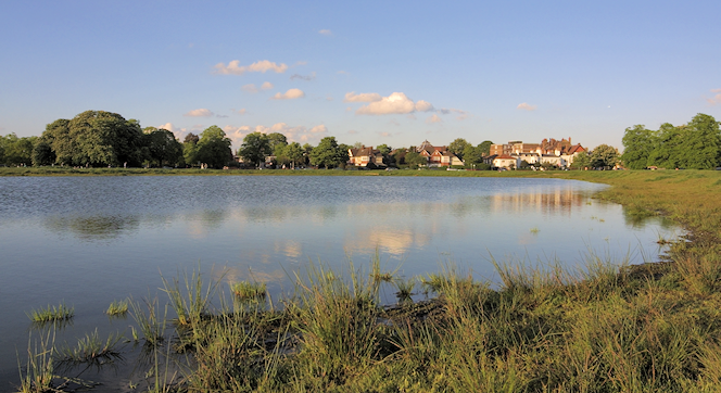Rushmere-Pond