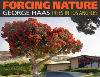 Forcing Nature front cover